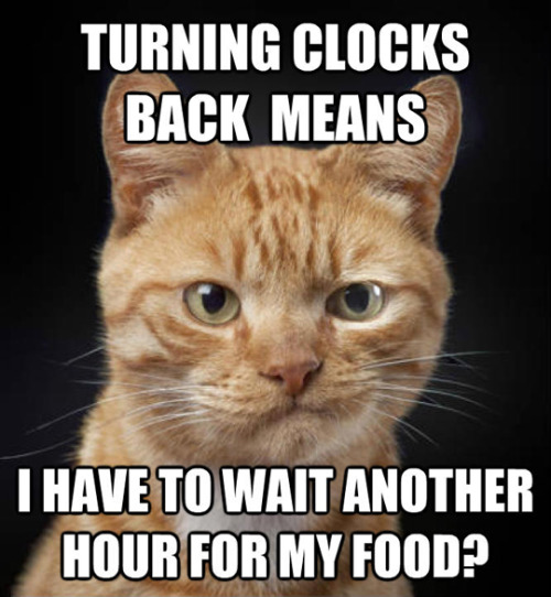 6a00d8357e4fe369e201bb09f92383970d pi locktheclock stop changing clocks for daylight saving time dst